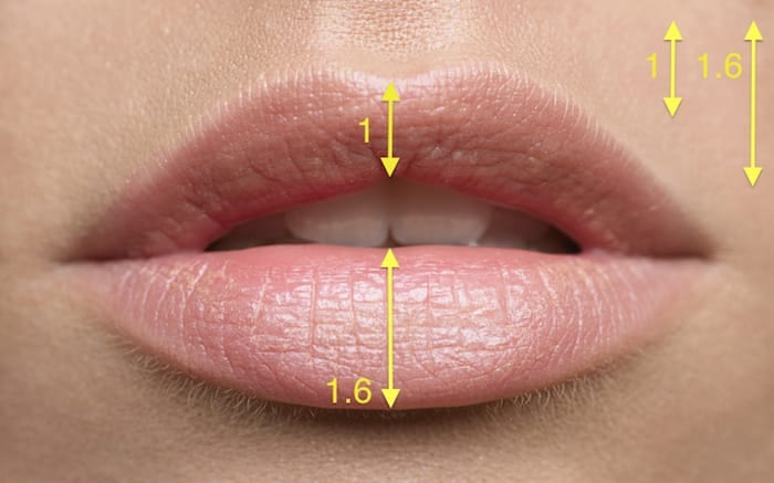 Rose Glen North Dakota ⁓ Try These 0 5ml Lip Filler Sydney